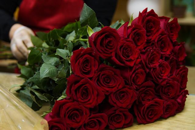 dlouhé růže